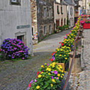 A Line Of Flowers In A French Village Art Print