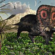 A Lone Torosaurus Dinosaur Feeding Art Print