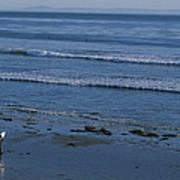 A Longboard Surfer Watches The Surf Art Print by Rich Reid