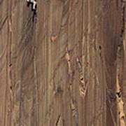 A Man Climbing The Concepcion Crack Art Print