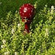 A Orb In Thyme Art Print