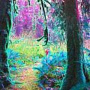 A Path Along A River Art Print
