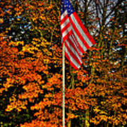A Patriotic Autumn Art Print