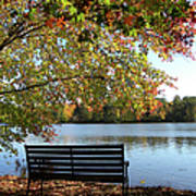 A Place For Thanks Giving Art Print
