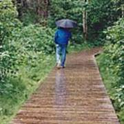A Rainey Day In Alaska Art Print