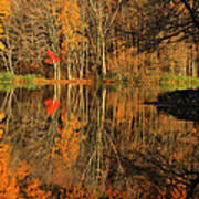 A Reflection Of October Art Print