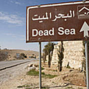 A Road Sign In Both Arabic And English Art Print by Taylor S. Kennedy