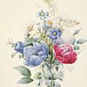 A Rose Anemone Mignonette And Daisies Art Print