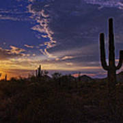 A Saguaro Sunset  Art Print