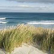 A Scenic Hillside Of The Beach Print by Bill Hatcher
