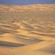 A Sea Of Dunes In The Sahara Desert Print by Stephen Sharnoff