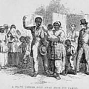 A Slave Father Sold Away Print by Everett