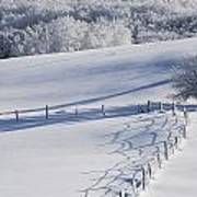 A Snowy Field Art Print