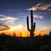 A Sonoran Sunset  Art Print