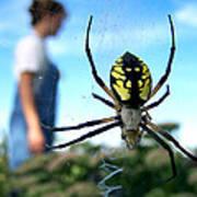 A Spider Beside Her Art Print