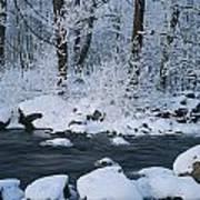 A Stream Running Through Snowy Woodland Art Print