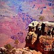 A Tree And The Canyon Art Print