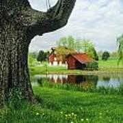 A Tree Frames A View Of A Farm Art Print by Annie Griffiths