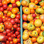 A Variety Of Fresh Tomatoes - 5d17904-long Art Print by Wingsdomain Art and Photography