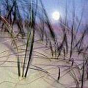 A View Of A Full Moon Rising Art Print