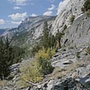 A View Through Goddard Canyon Art Print