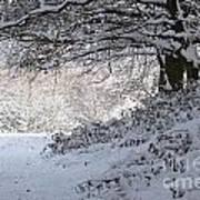 A Walk In The Snow Art Print