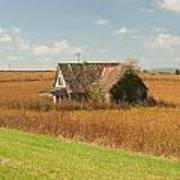 Abandoned Farmhouse In Field 2 Art Print