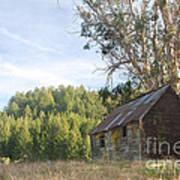 Abandoned Rustic Cabin Art Print by Matt Tilghman