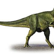 Abelisaurus Comahuensis, A Prehistoric Art Print