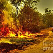 Ablaze Art Print by Joanne Kocwin