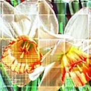 Abstract Daffodils  Art Print