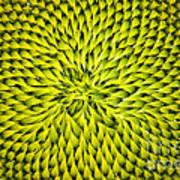 Abstract Sunflower Pattern Art Print