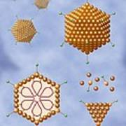 Adenovirus Structure, Artwork Art Print