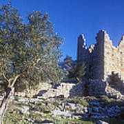 Aegosthena Citadel Art Print