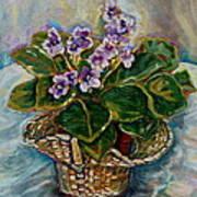 African Violets Art Print by Carole Spandau