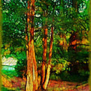 Afternoon Delight Art Print by Judi Bagwell