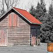 Aging Shed And Barrel Art Print