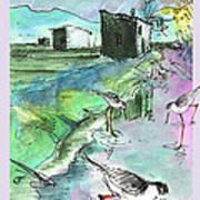 Albufera De Valencia 14 Art Print