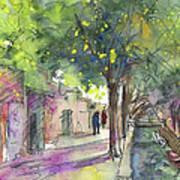 Albufera De Valencia 17 Art Print