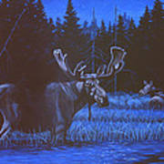 Algonquin Moonlight Art Print by Richard De Wolfe