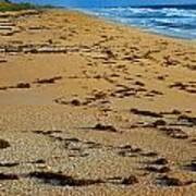 All Beach Art Print