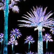 All The Palms Art Print