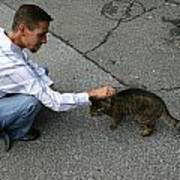 Alley Cat Greeting Art Print
