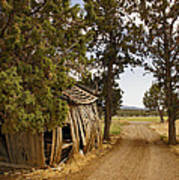Almost A Pile Of Wood Barn Vertical Art Print