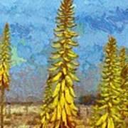 Aloe Vera Flowers Art Print