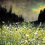 Alpine Meadow Art Print