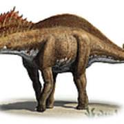 Amargasaurus Cazaui, A Prehistoric Era Art Print