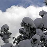 Amazing Arizona Winter Skies Art Print