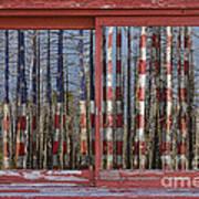 America Still Beautiful Red Picture Window Frame Photo Art View Art Print