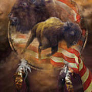 American Buffalo Art Print by Carol Cavalaris